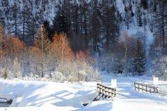Winterbrücke Lizenzfreies Stockfoto