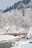 Winterbrücke Lizenzfreie Stockfotografie