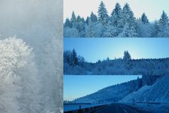 Wintercollage Stockfotos