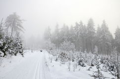 Wintercross country-Landschaft Stockfotos