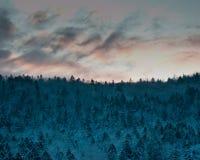 Winterdämmerung im Hokkaido, Japan Stockfotografie