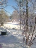 Winterday Royalty-vrije Stock Afbeeldingen