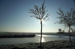 Winterday ensoleillé Image libre de droits