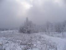 Winterdunst 1 stockbilder