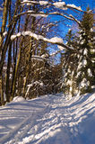Winterdurchlauf Stockfotos