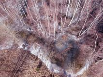 Winterendenwald und Wasser flod mit dem Eis, von der Luft Stockfotos