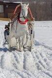 Winterfeiertag lizenzfreies stockbild