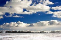 Winterfeld lizenzfreie stockfotos
