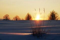 Winterfeld bei Sonnenaufgang Lizenzfreies Stockfoto