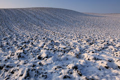 Winterfelder Stockfoto