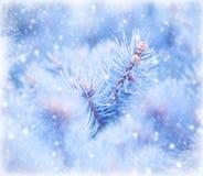 Winterfensterhintergrund Stockfoto