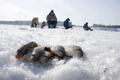 Winterfischen Lizenzfreie Stockfotos