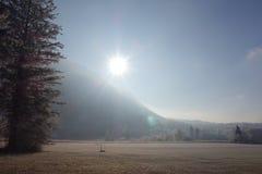 Winterfläche im Backlighting Lizenzfreies Stockbild