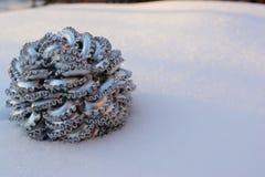 Winterflitter Lizenzfreies Stockbild