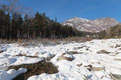 Winterfluß stockfotografie