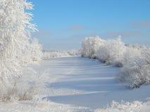 Winterfluß Stockfoto
