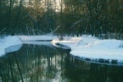 Winterfluß im Wald Stockfotografie