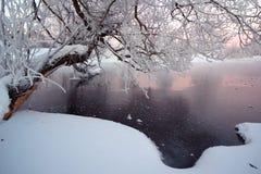 Winterfluß mit einem Baum Lizenzfreie Stockfotos