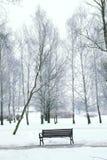 Winterfluß nachts Stockbilder