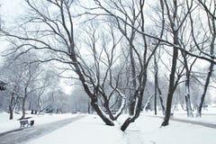 Winterfluß nachts Stockfotos