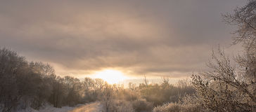 Winterfluss-Uferschnee Lizenzfreie Stockfotografie