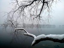 Winterflussansicht Lizenzfreie Stockfotografie