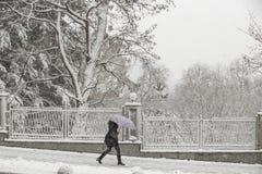 Winterfrau unter Regenschirm stockfoto