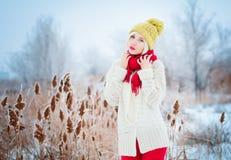 Winterfrauenporträt lizenzfreie stockfotos