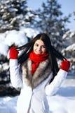 Winterfrauenporträt im Freien Stockbild