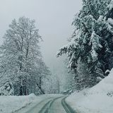 WinterFun стоковые фото