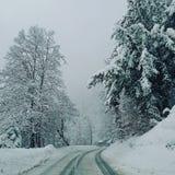 WinterFun arkivfoton