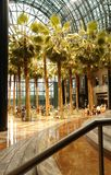 Wintergarden Royalty Free Stock Photography
