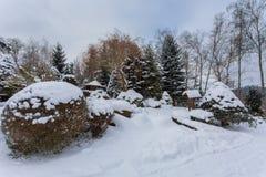 Wintergarden bonito coberto pela neve fotografia de stock