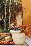 Wintergarden in een hotel stock foto