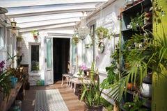 Wintergarden met veel installaties Ruimte in het huis voor ontspanning met bloemen Het tuinieren, veranda in plattelander stock afbeelding