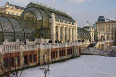 Wintergarden nevado de Viena fotografia de stock royalty free