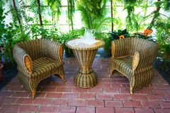 wintergarden pequeno com plantas tropicais imagens de stock royalty free