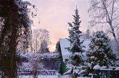 Wintergartenlandschaft lizenzfreie stockfotos