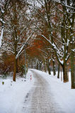 Wintergasse Lizenzfreie Stockfotos
