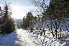 Wintergebirgslandschaftsstraße und bunte Blendenflecke Lizenzfreies Stockfoto