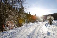 Wintergebirgslandschaftsstraße und bunte Blendenflecke Stockbild