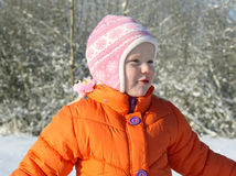 Wintergeschichte Lizenzfreie Stockbilder