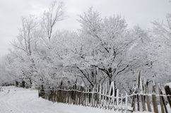 Wintergeschichte Lizenzfreies Stockbild