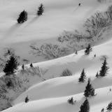 Wintergraphiken Lizenzfreies Stockfoto