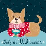 Wintergrußkarte mit nettem Hund Stockfoto
