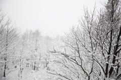 Winterhügel mit Kreuz, verblassend in der Wolke und Schnee bedeckten Anlagen Lizenzfreie Stockbilder