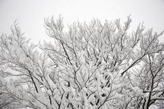 Winterhügel mit Kreuz, verblassend in der Wolke und Schnee bedeckten Anlagen Stockfoto
