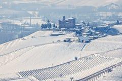 Winterhügel von Langhe Stockbild