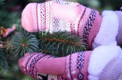 Winterhandschuhe in der Sonne Stockfotos