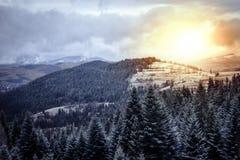 Winterhügel- und -waldlandschaft Stockbilder